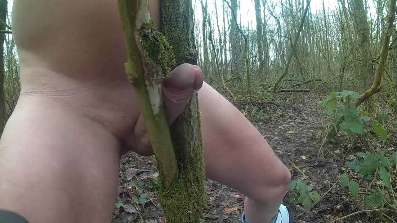 Порно Геи Дрочат В Лесу