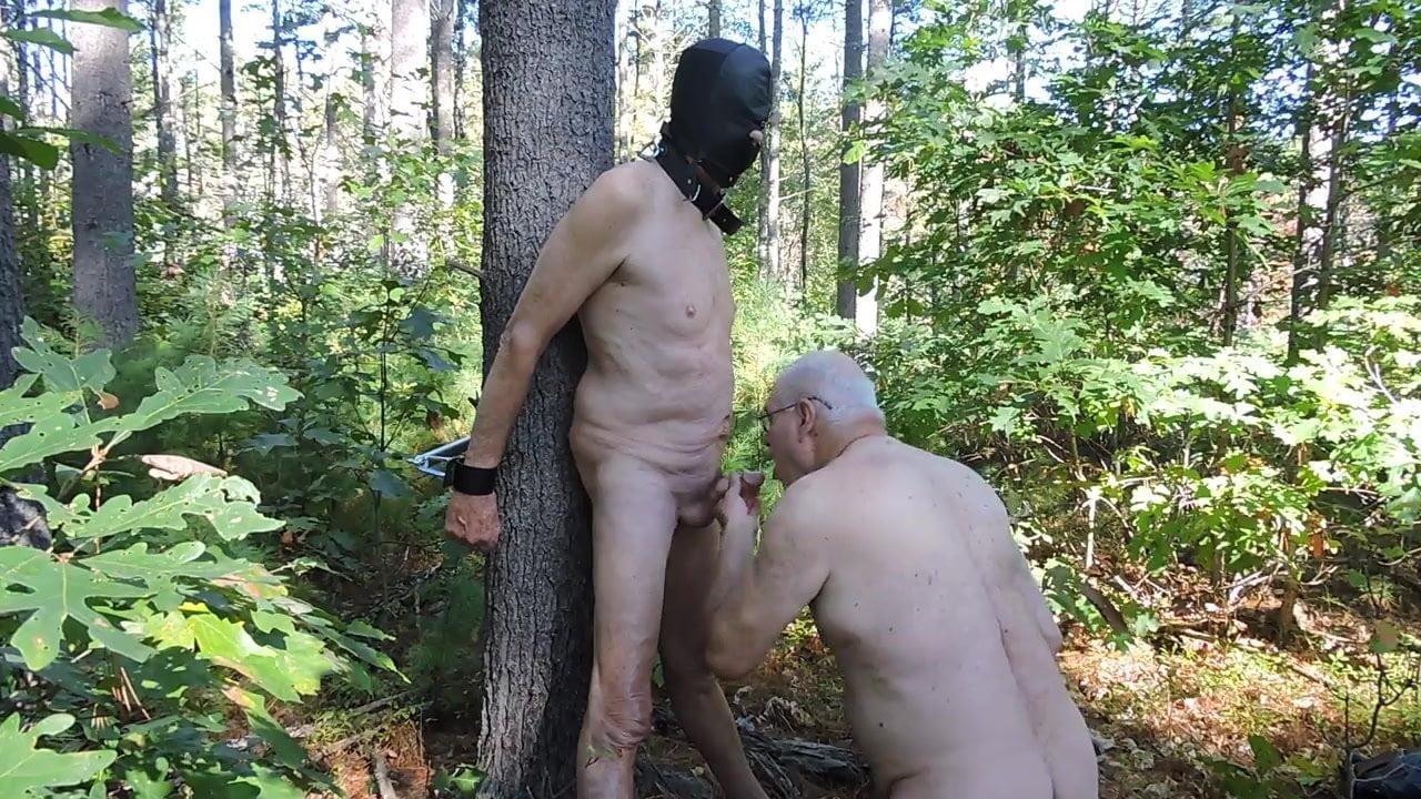 Порно Геи В Лесу