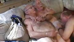 Порно Дед Гей Дрочит В Общественном Месте