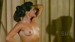 Lullaby of Bareland (1964) - The Nudie Artist