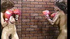 Топлесс бокс