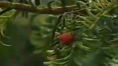 Blutjunge Puppen 1991