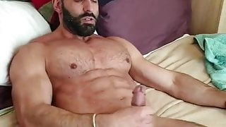 Arab bear