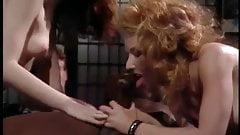 The Chameleon (1989)  full movie