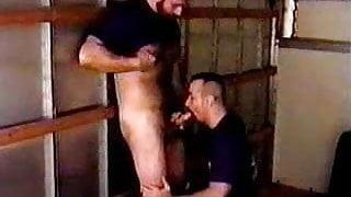 Hairy Bear Gay Bear Men