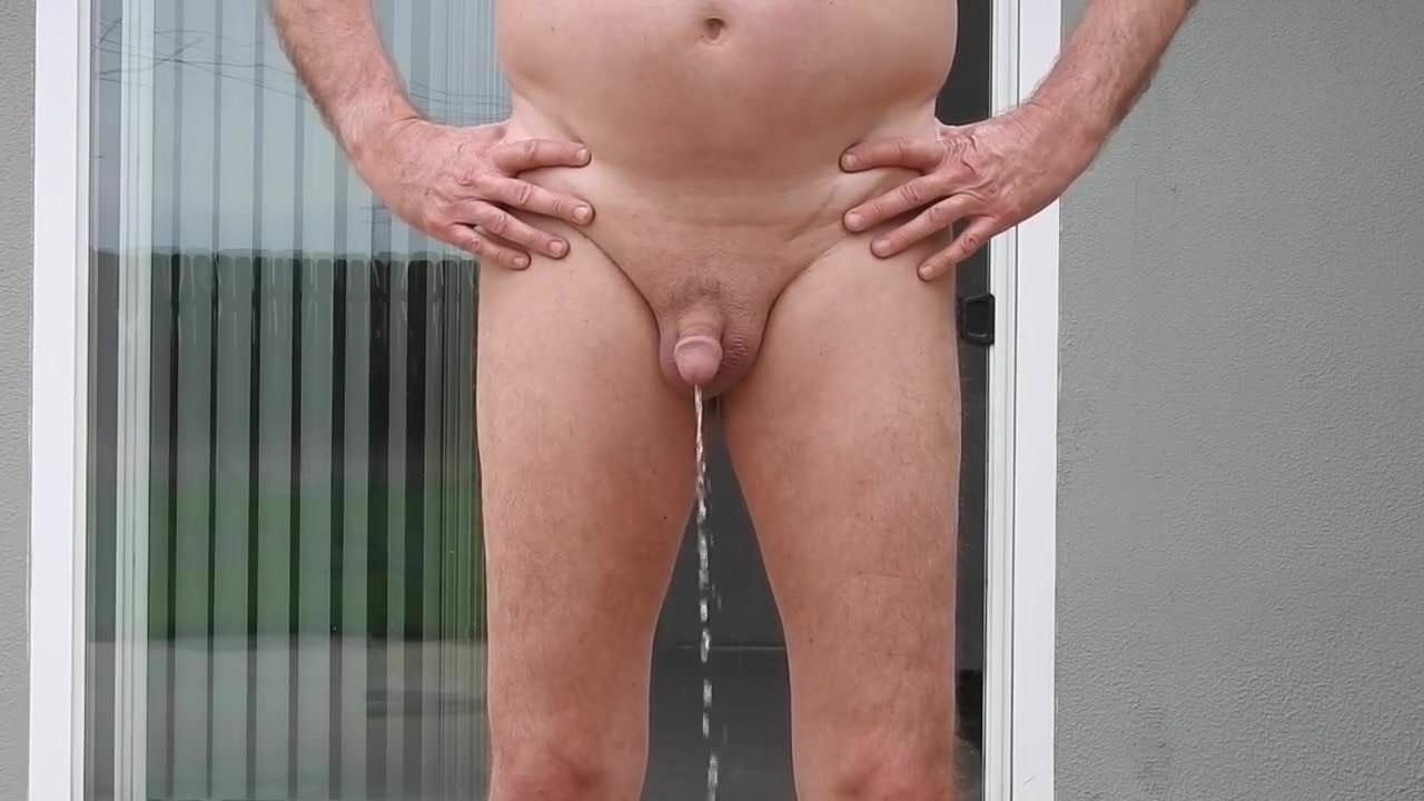 Can a transplanted penis work like the original