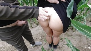 risky public nature fuck in a cornfield - projectsexdiary