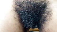 Hairy Ebony