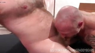 Sexy daddy bottoms for buddy in Texas bear orgy