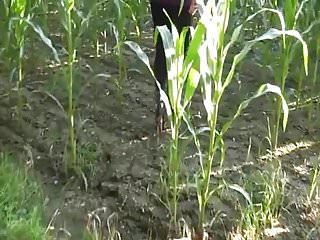 Blog corn porn - Amateur peeing a huge load in the corn field