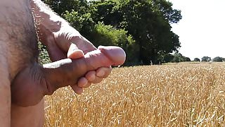 Couple of clips wanking hard shaved cock public field