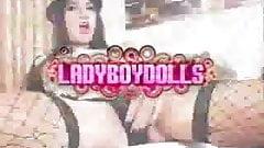 Great ladyboy teaser PB
