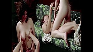 HD VIDEO 173