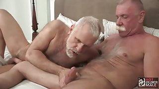 2 maduros canosos velludos