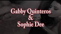 Gabby Quinteros Gets Pussy Pleased buy Sophie Dee