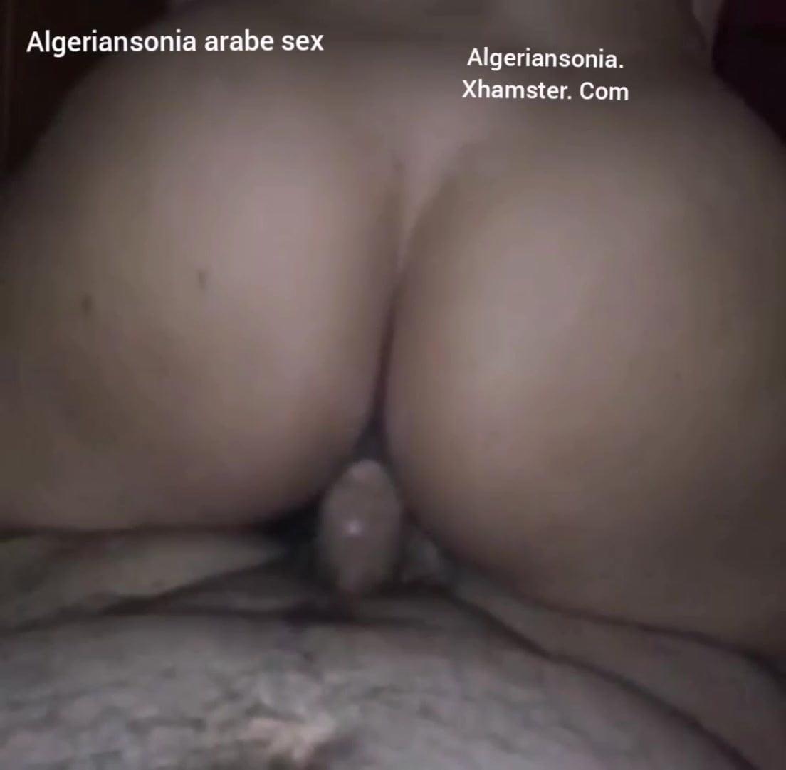 Algerian Pussy algerian sonia arabe cowgirl