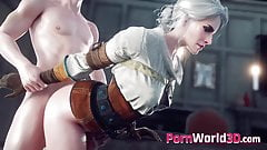 3D Sex Collection - Whores from The Witcher 3 Fucked