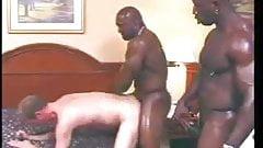 big black gay cocks on white boy