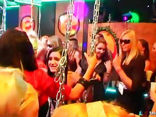 Free picture large swinger orgy Hot pornstars taking large dicks at swinger party