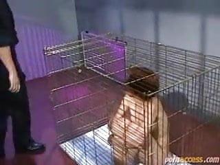 Prison girl porn Creampie caged girl in prison