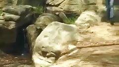 Blondynka młodzi pieprzy faceta w parku