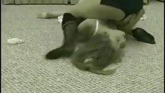 Stockings and Garter Belt Catfight