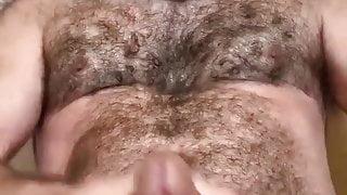 Bearded Hairy Bear Jacking Off