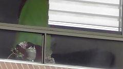 window voyeur nice girl upskirt in towel