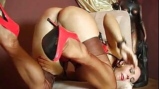 Nylons & Stockings 621