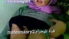 Egyptian falaha