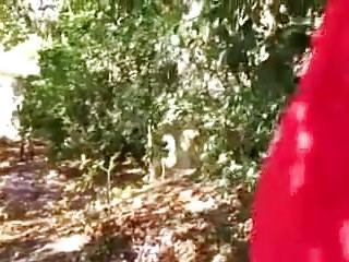 Young teen sex boy video - Promenons nous dans les bois