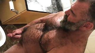 Pissing Bear