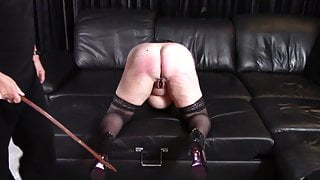 10 strokes with dog whip