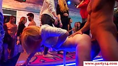 European party babes railing cocks on camera