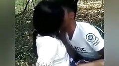 Ngewe di hutan
