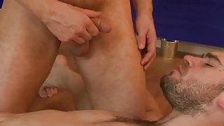 Fat Cock Piss Pigs Playing