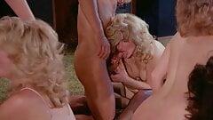 Love Champions (1985, US, complete movie, HDrip)