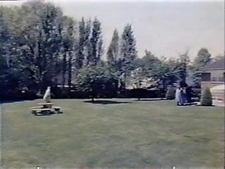 Cock shaped arrows Arrow 1977