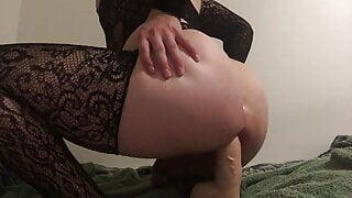 dreamy pawg rides
