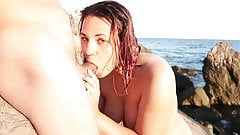 Public swallow on a Nudist beach