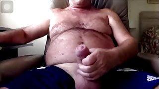 British daddy bear