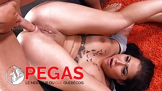 Pegas Productions - A2m in Cumpilation !