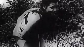 Hard Sex in Green Meadow (1930s Vintage)