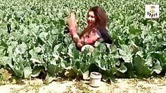girlfriend Desi Bhabhi has funny affair in fields  nipple