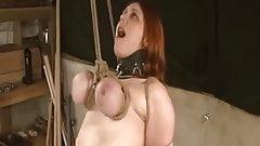 Tits suspention