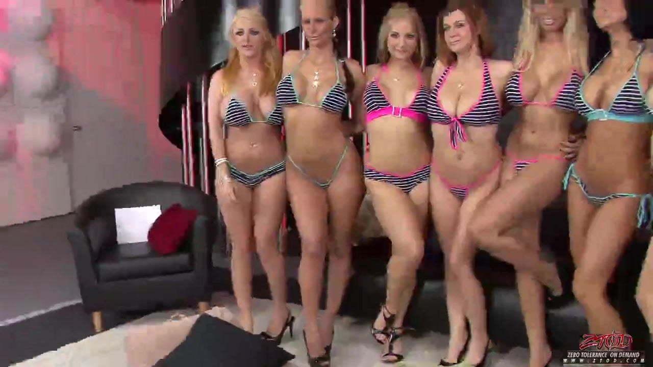 Big Ass Big Tits Pornstar
