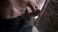Playing with my big horny cock at the beach toilets