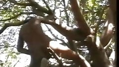 Mowgli Jerk off in the Jungle