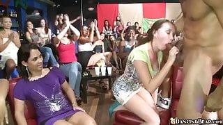 Crazy Dancing Bear Blowjob Party