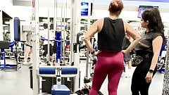 Cameltoe pussy lips at gym